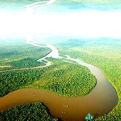 Selva-virgen-del-Amazonas-Brasil