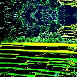 Terrazas-de-Arroz-de-Banaue-Filipinas